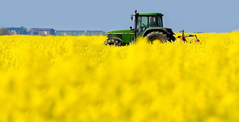 theorie24 - Traktorenprüfung bestehen mit theorie24